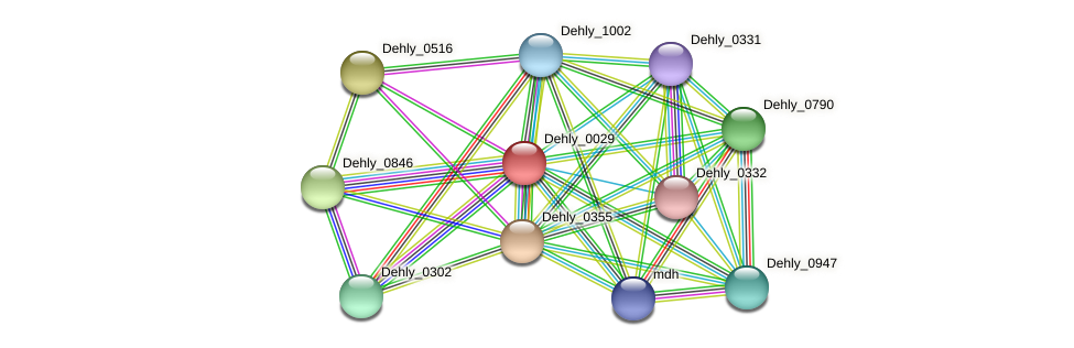 Dehly_0029 protein (Dehalogenimonas lykanthroporepellens) - STRING interaction network