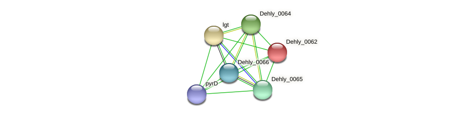 Dehly_0062 protein (Dehalogenimonas lykanthroporepellens) - STRING interaction network