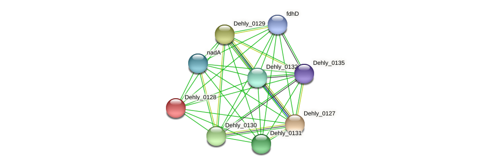Dehly_0128 protein (Dehalogenimonas lykanthroporepellens) - STRING interaction network