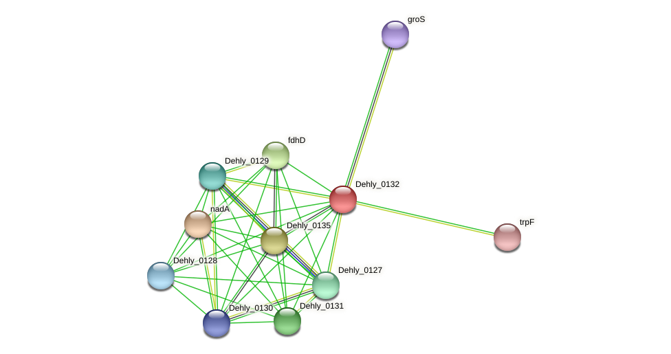 Dehly_0132 protein (Dehalogenimonas lykanthroporepellens) - STRING interaction network