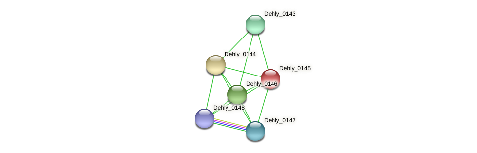 Dehly_0145 protein (Dehalogenimonas lykanthroporepellens) - STRING interaction network