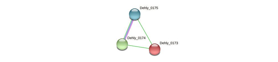 Dehly_0173 protein (Dehalogenimonas lykanthroporepellens) - STRING interaction network