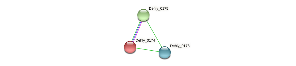 Dehly_0174 protein (Dehalogenimonas lykanthroporepellens) - STRING interaction network