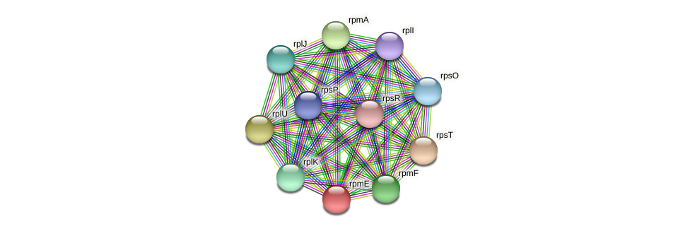 rpmE protein (Dehalogenimonas lykanthroporepellens) - STRING interaction network