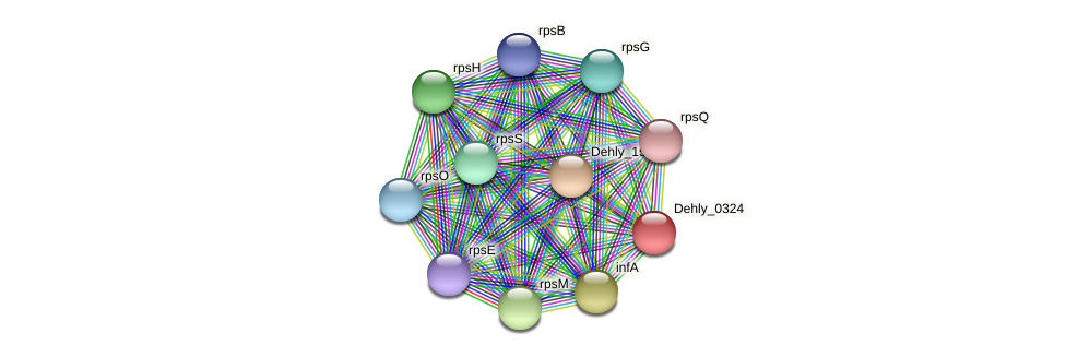 Dehly_0324 protein (Dehalogenimonas lykanthroporepellens) - STRING interaction network