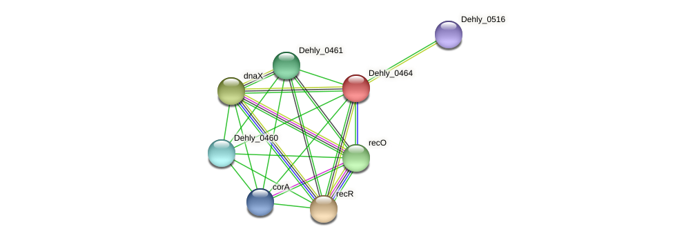 Dehly_0464 protein (Dehalogenimonas lykanthroporepellens) - STRING interaction network
