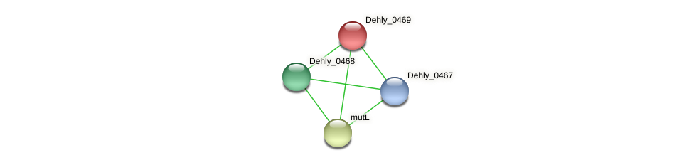 Dehly_0469 protein (Dehalogenimonas lykanthroporepellens) - STRING interaction network