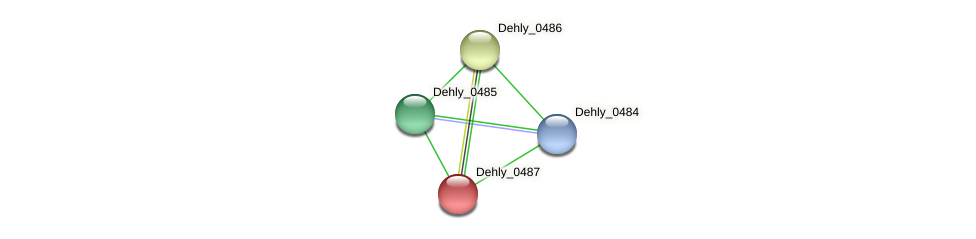 Dehly_0487 protein (Dehalogenimonas lykanthroporepellens) - STRING interaction network