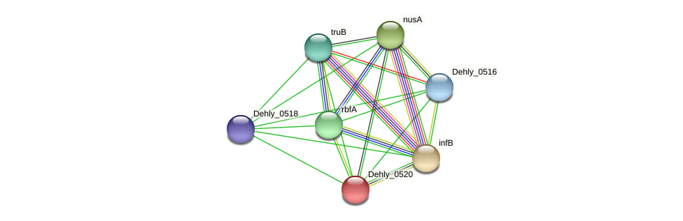 Dehly_0520 protein (Dehalogenimonas lykanthroporepellens) - STRING interaction network