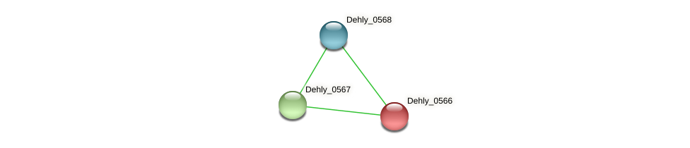 Dehly_0566 protein (Dehalogenimonas lykanthroporepellens) - STRING interaction network