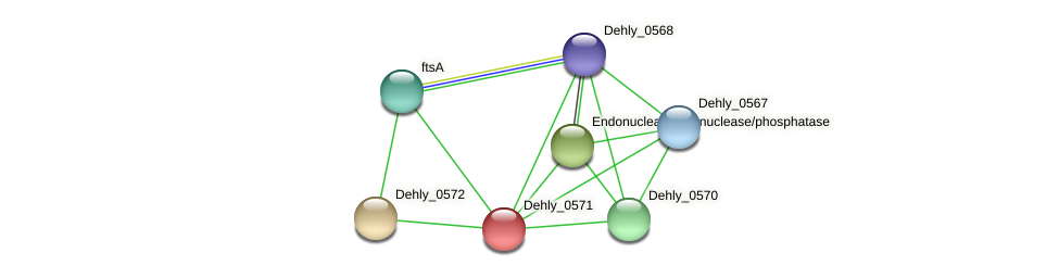 Dehly_0571 protein (Dehalogenimonas lykanthroporepellens) - STRING interaction network