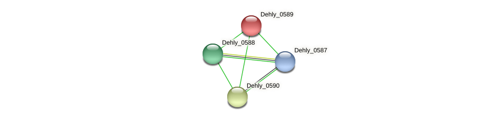 Dehly_0589 protein (Dehalogenimonas lykanthroporepellens) - STRING interaction network
