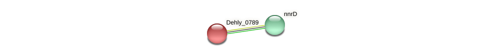 Dehly_0789 protein (Dehalogenimonas lykanthroporepellens) - STRING interaction network