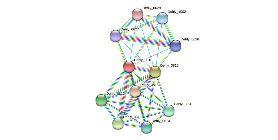 Dehly_0818 protein (Dehalogenimonas lykanthroporepellens) - STRING interaction network