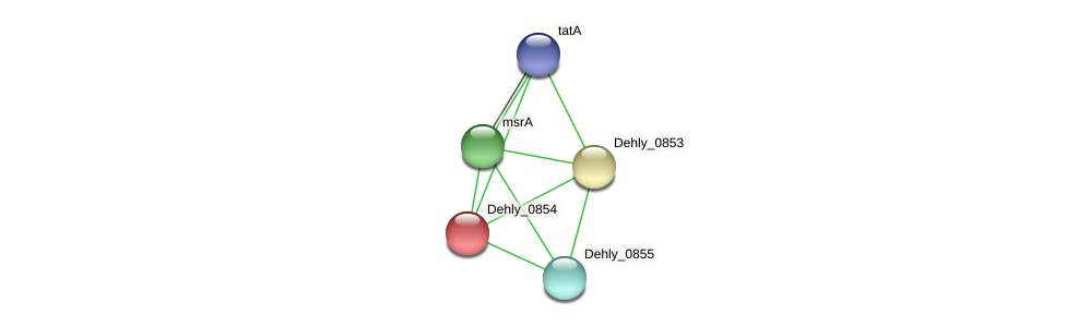 Dehly_0854 protein (Dehalogenimonas lykanthroporepellens) - STRING interaction network