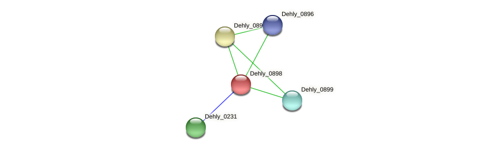 Dehly_0898 protein (Dehalogenimonas lykanthroporepellens) - STRING interaction network