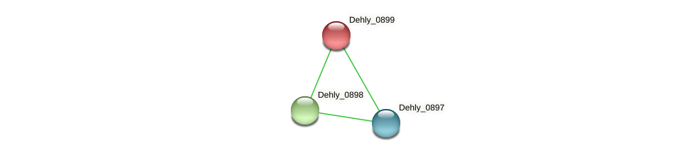 Dehly_0899 protein (Dehalogenimonas lykanthroporepellens) - STRING interaction network