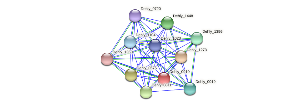 Dehly_0910 protein (Dehalogenimonas lykanthroporepellens) - STRING interaction network