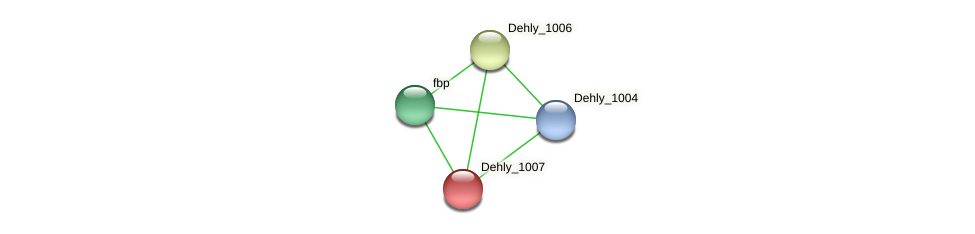 Dehly_1007 protein (Dehalogenimonas lykanthroporepellens) - STRING interaction network