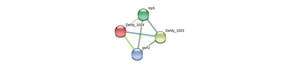 Dehly_1024 protein (Dehalogenimonas lykanthroporepellens) - STRING interaction network