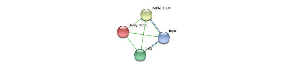 Dehly_1033 protein (Dehalogenimonas lykanthroporepellens) - STRING interaction network