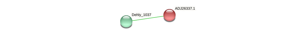 Dehly_1036 protein (Dehalogenimonas lykanthroporepellens) - STRING interaction network