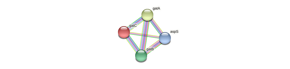 gatC protein (Dehalogenimonas lykanthroporepellens) - STRING interaction network