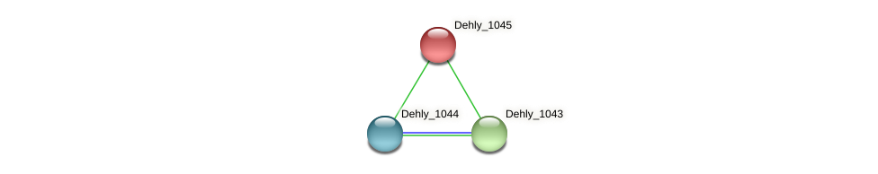Dehly_1045 protein (Dehalogenimonas lykanthroporepellens) - STRING interaction network