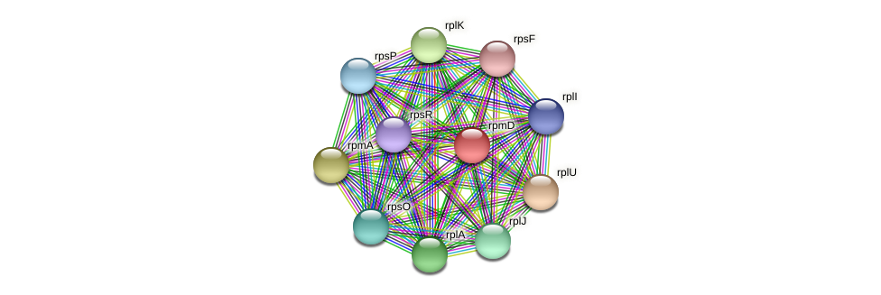 rpmD protein (Dehalogenimonas lykanthroporepellens) - STRING interaction network