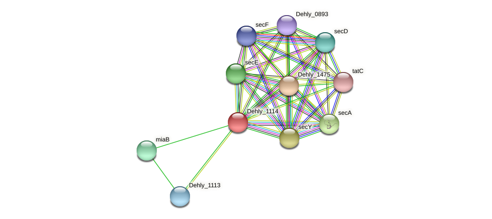 Dehly_1114 protein (Dehalogenimonas lykanthroporepellens) - STRING interaction network