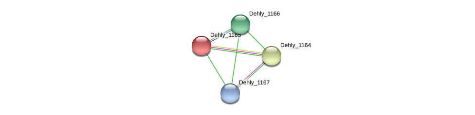 Dehly_1165 protein (Dehalogenimonas lykanthroporepellens) - STRING interaction network