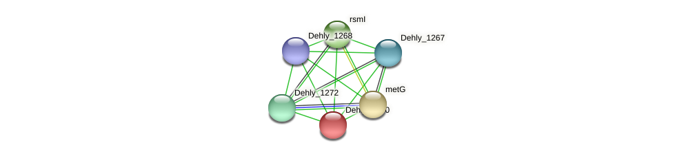 Dehly_1270 protein (Dehalogenimonas lykanthroporepellens) - STRING interaction network