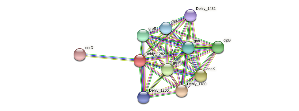 Dehly_1282 protein (Dehalogenimonas lykanthroporepellens) - STRING interaction network