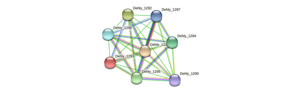 Dehly_1293 protein (Dehalogenimonas lykanthroporepellens) - STRING interaction network