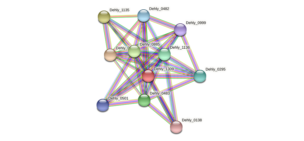 Dehly_1309 protein (Dehalogenimonas lykanthroporepellens) - STRING interaction network