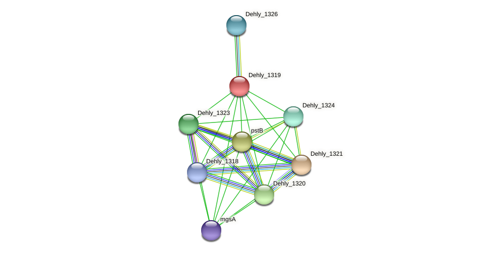 Dehly_1319 protein (Dehalogenimonas lykanthroporepellens) - STRING interaction network