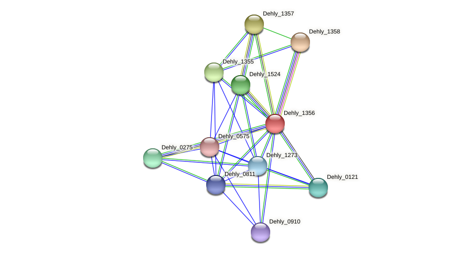 Dehly_1356 protein (Dehalogenimonas lykanthroporepellens) - STRING interaction network