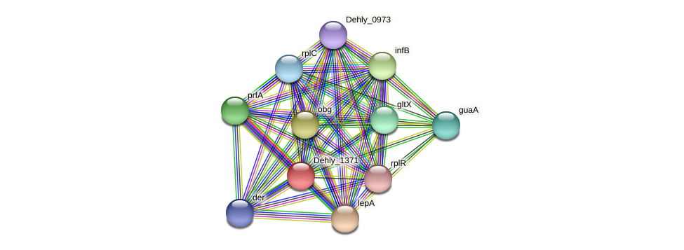 Dehly_1371 protein (Dehalogenimonas lykanthroporepellens) - STRING interaction network