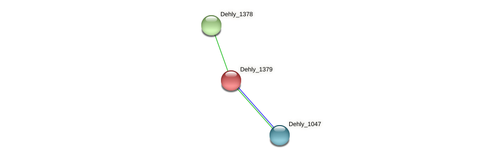 Dehly_1379 protein (Dehalogenimonas lykanthroporepellens) - STRING interaction network