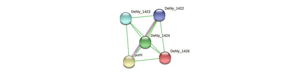 Dehly_1426 protein (Dehalogenimonas lykanthroporepellens) - STRING interaction network