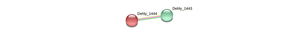 Dehly_1444 protein (Dehalogenimonas lykanthroporepellens) - STRING interaction network