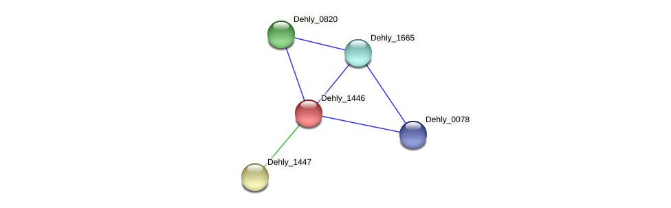 Dehly_1446 protein (Dehalogenimonas lykanthroporepellens) - STRING interaction network