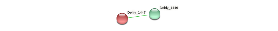 Dehly_1447 protein (Dehalogenimonas lykanthroporepellens) - STRING interaction network