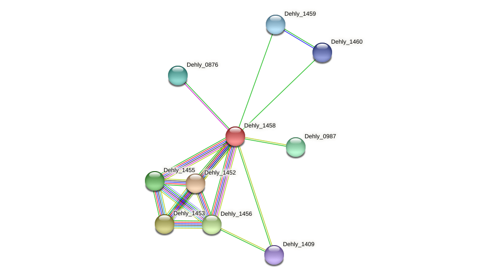 Dehly_1458 protein (Dehalogenimonas lykanthroporepellens) - STRING interaction network