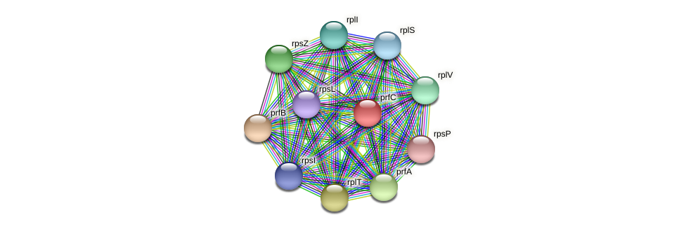 prfC protein (Dehalogenimonas lykanthroporepellens) - STRING interaction network