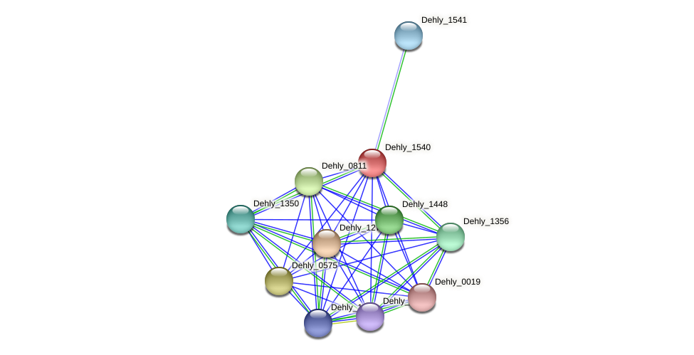 Dehly_1540 protein (Dehalogenimonas lykanthroporepellens) - STRING interaction network