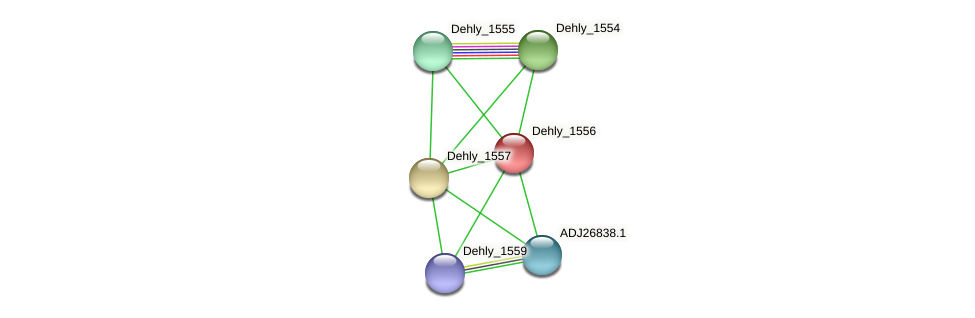 Dehly_1556 protein (Dehalogenimonas lykanthroporepellens) - STRING interaction network
