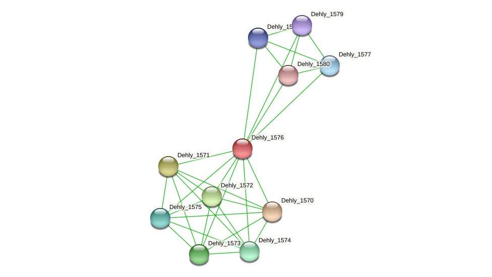 Dehly_1576 protein (Dehalogenimonas lykanthroporepellens) - STRING interaction network