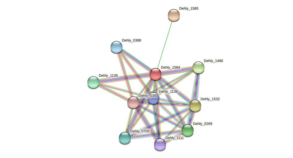 Dehly_1584 protein (Dehalogenimonas lykanthroporepellens) - STRING interaction network