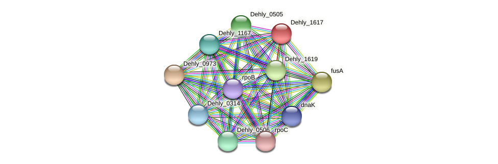 Dehly_1617 protein (Dehalogenimonas lykanthroporepellens) - STRING interaction network